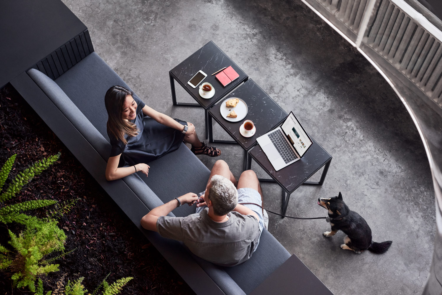office scene, two people working on sofas together